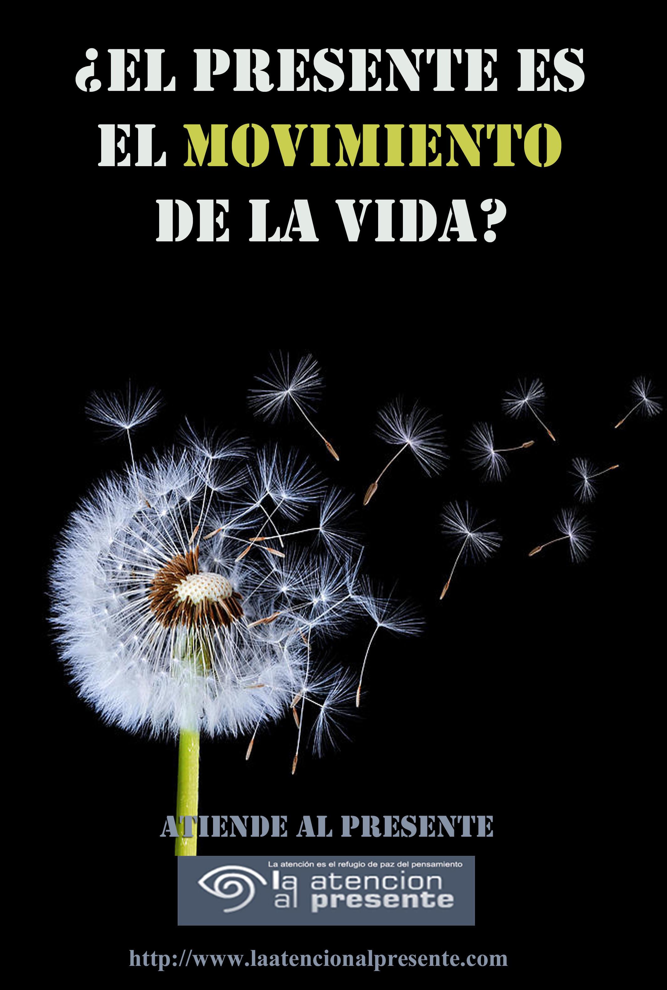 15 de mayo Esteban El PRESENTE es el MOVIMIENTO de la VIDA
