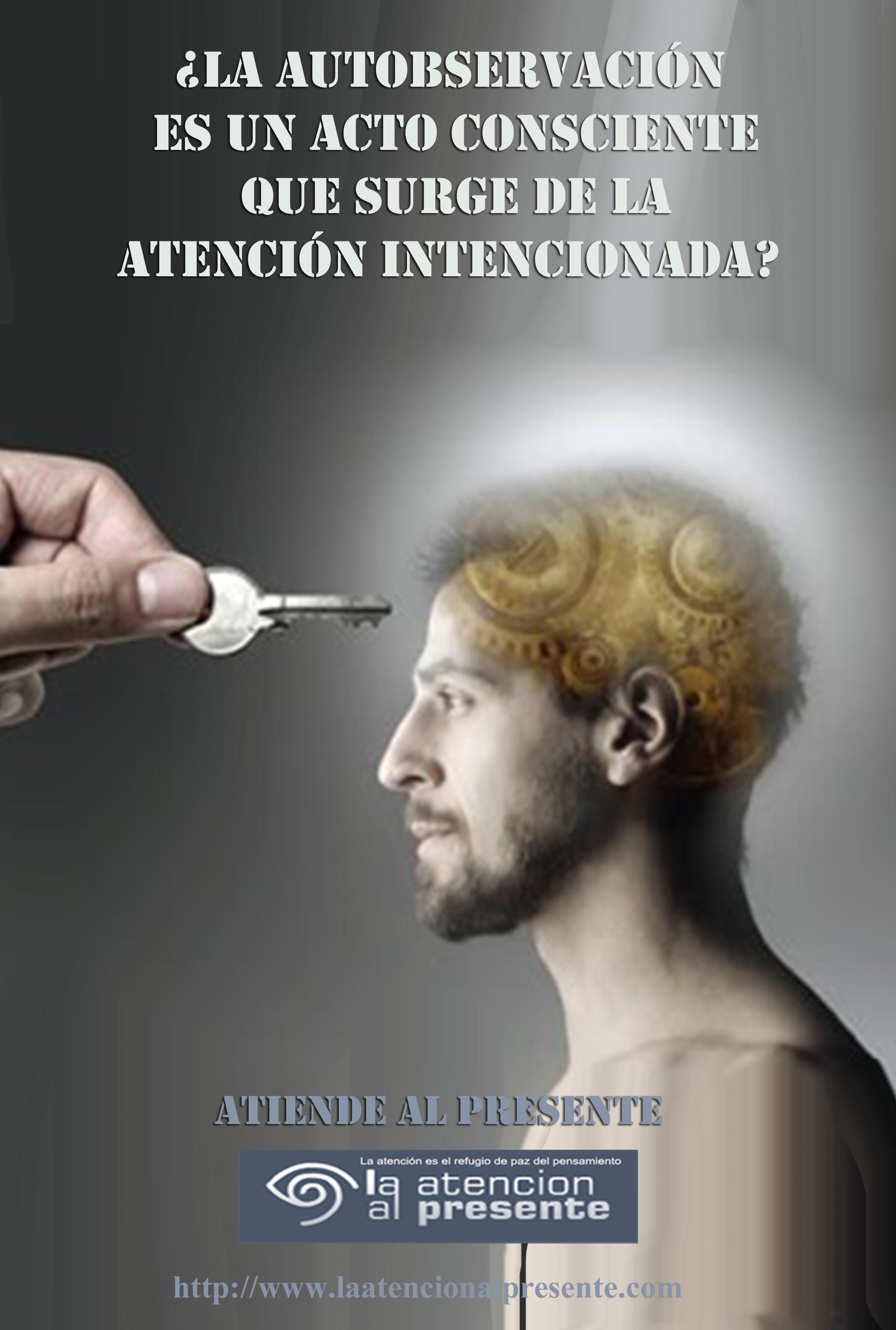 17 de febrero Esteban La autobservación es un acto consciente que surge de la atención intencionada