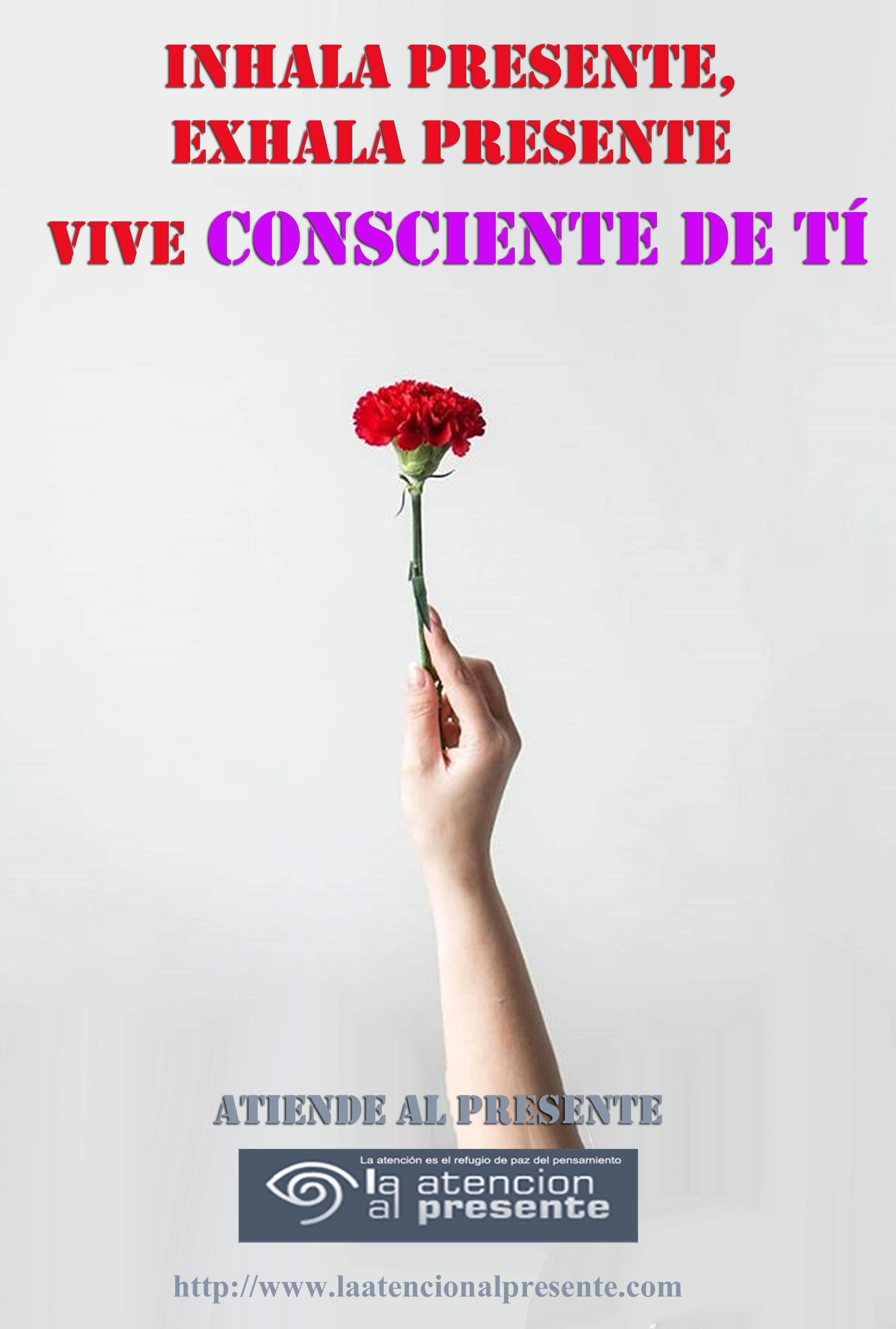 29 de mayo Esteban Inhala PRESENTE exhala PRESENTE vive AQUÏ y AHORA. MENOS PESO