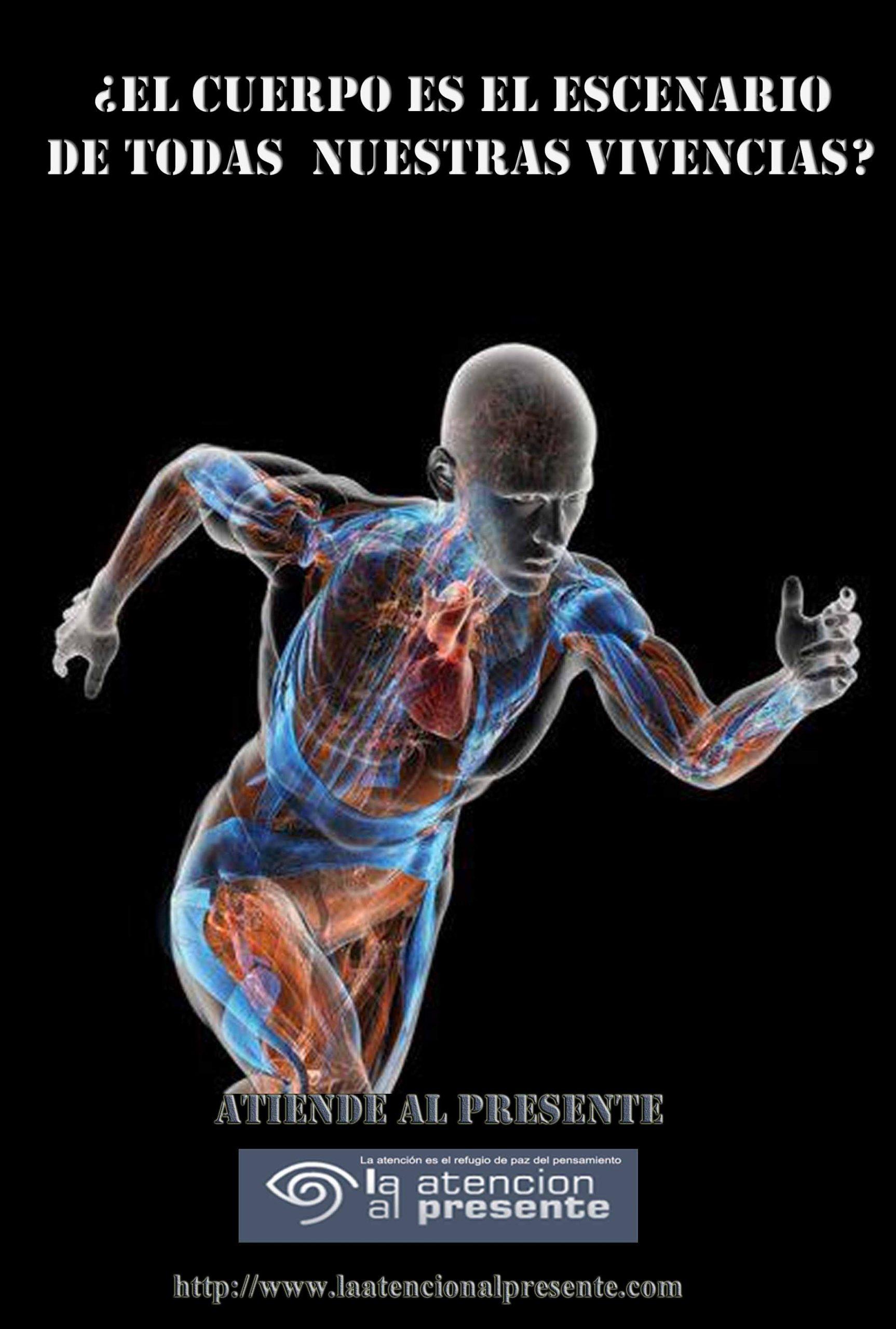 10 de diciembre PEPE El cuerpo es el escenario de todas nuestras vivencias 5 min scaled