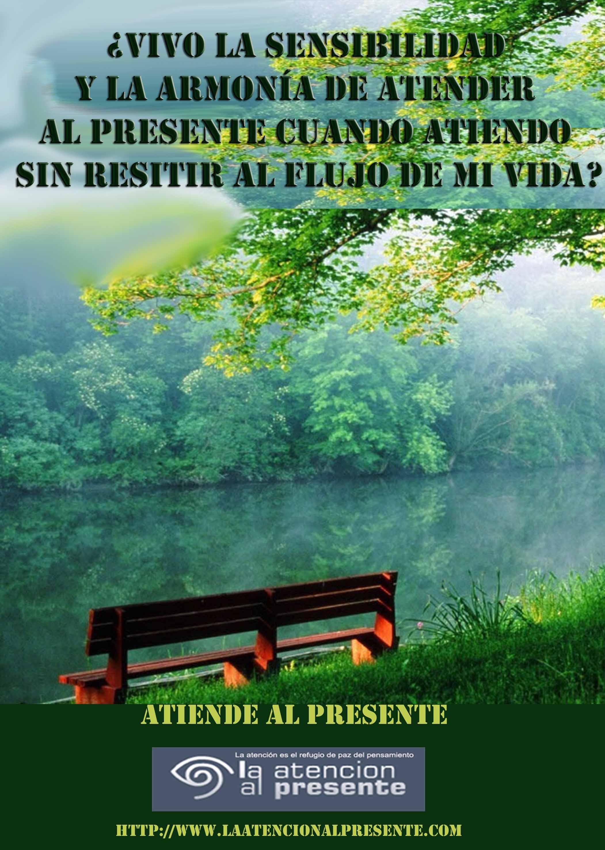 24 de noviembre Pepe Vivo la sensibilidad y la armonía de atender al presente cuando atiendo sin resitir al flujo de mi vida min
