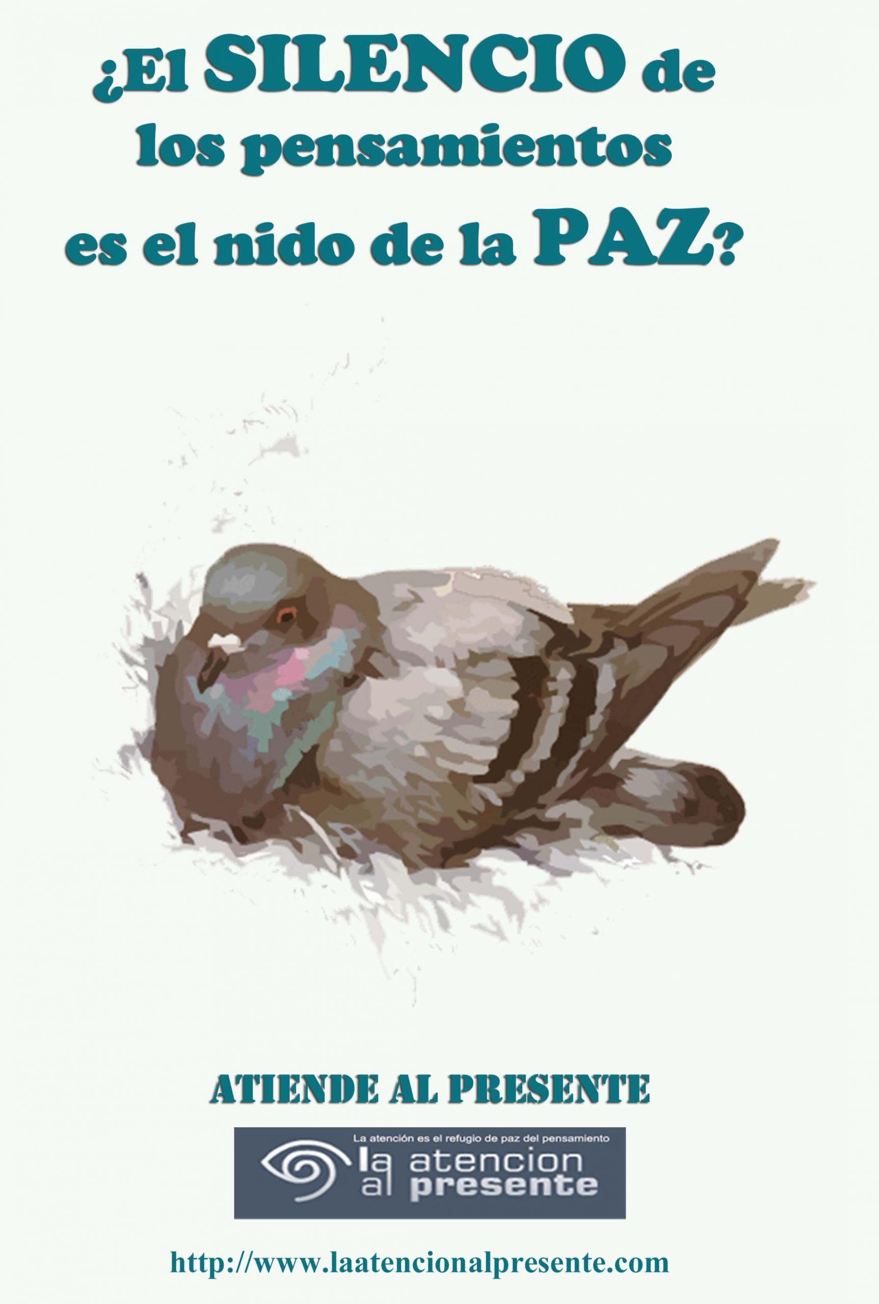 4 de febrero Esteban El SILENCIO de los pensamientos es el nido de la PAZ min scaled