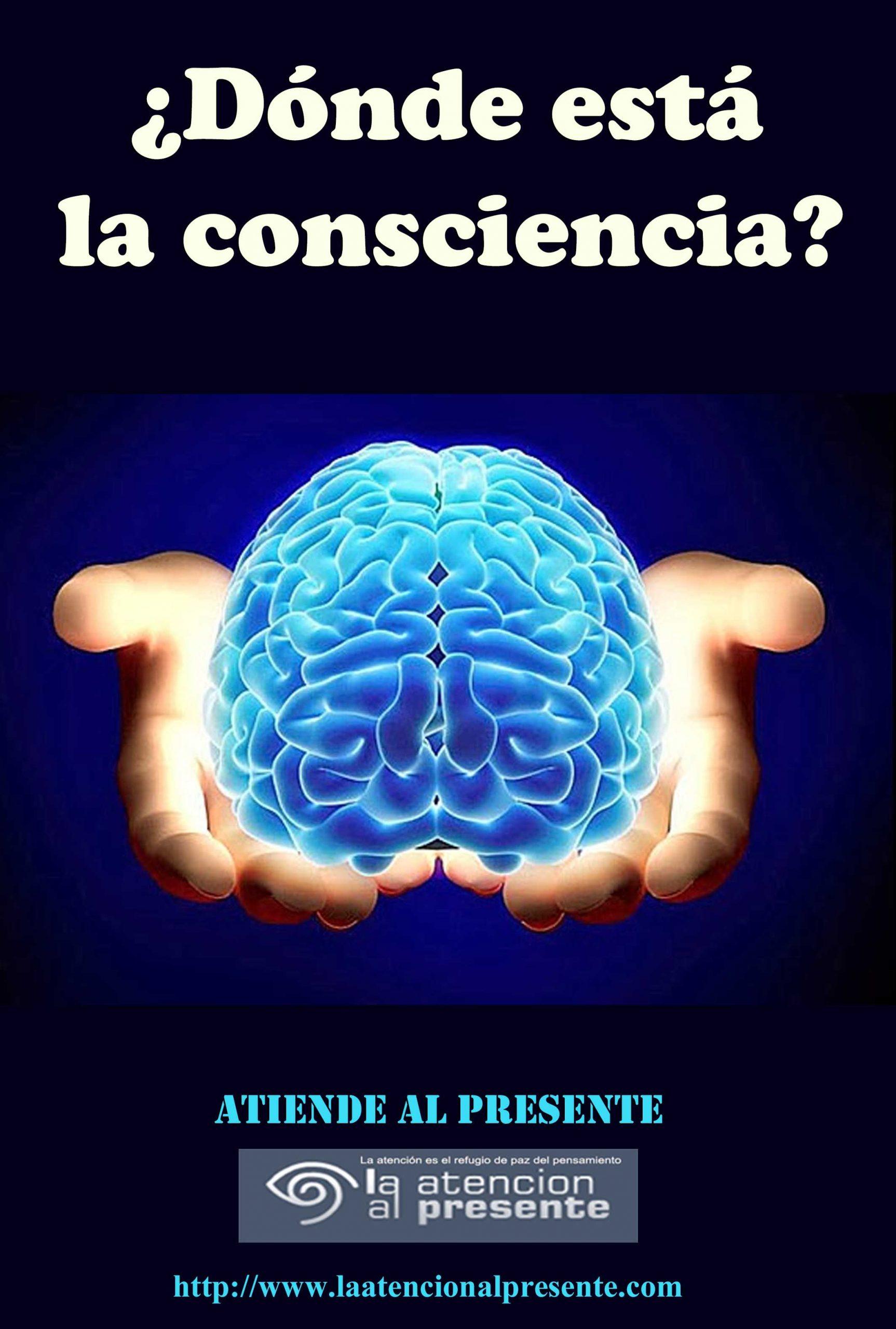 12 de marzo Esteban Dónde está la conciencia min scaled