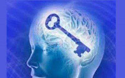 La consciencia es un estado de la mente