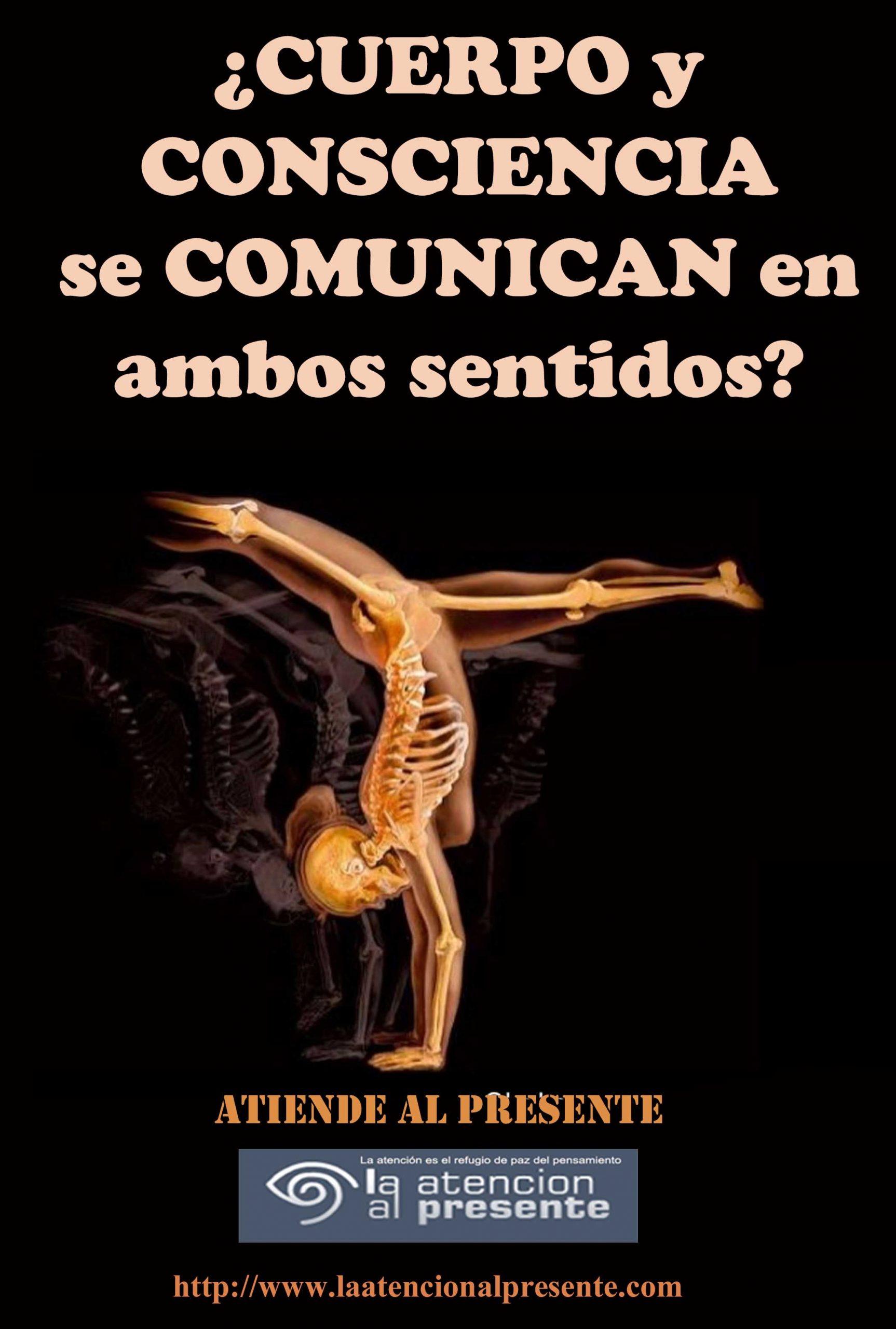 26 de junio Esteban CUERPO y CONSCIENCIA se COMUNICAN en ambos sentidos min scaled