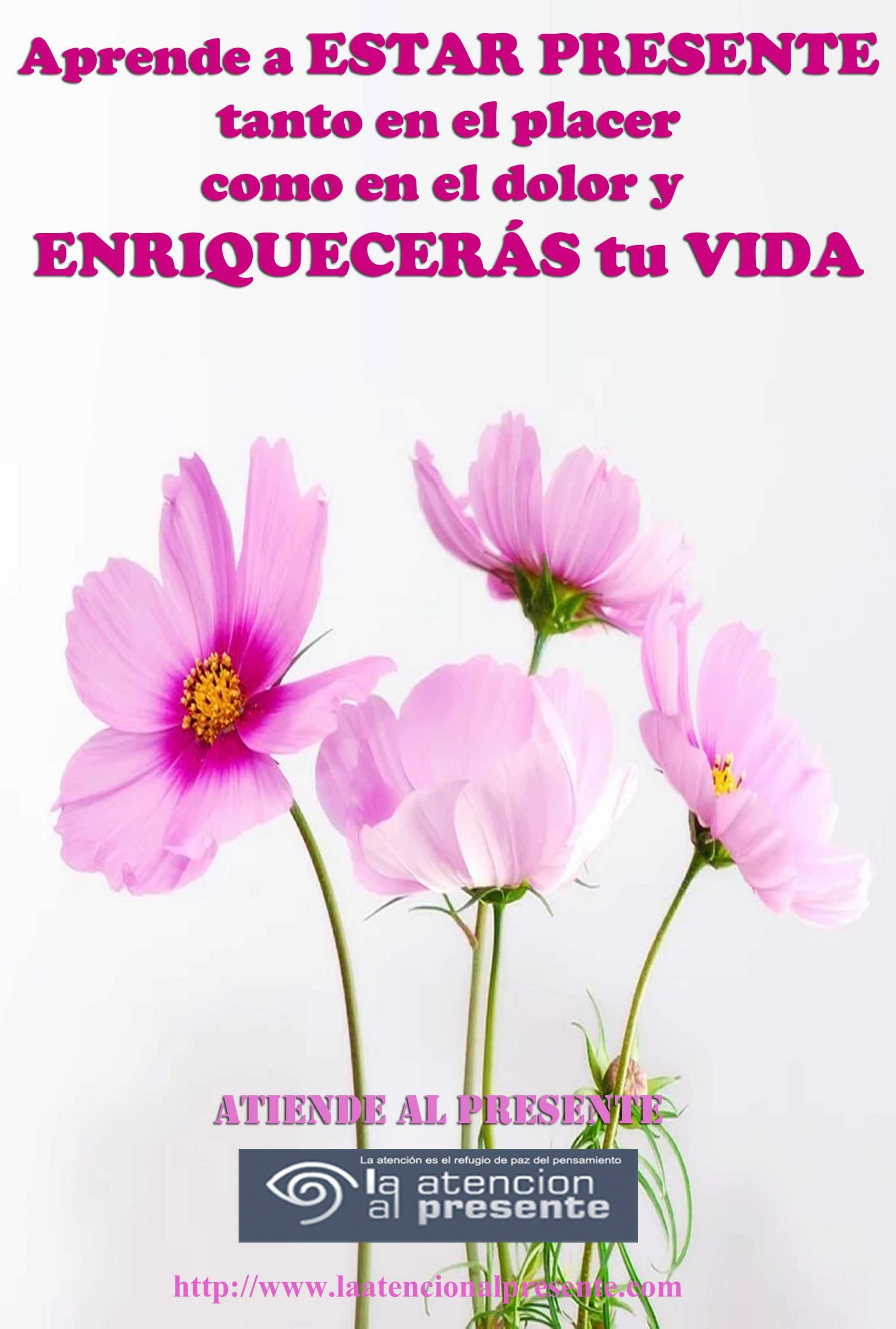 10 de Julio Esteban Aprende a ESTAR PRESENTE Tanto en el placer como en el dolor y ENRIQUECERÁS tu VIDA min scaled