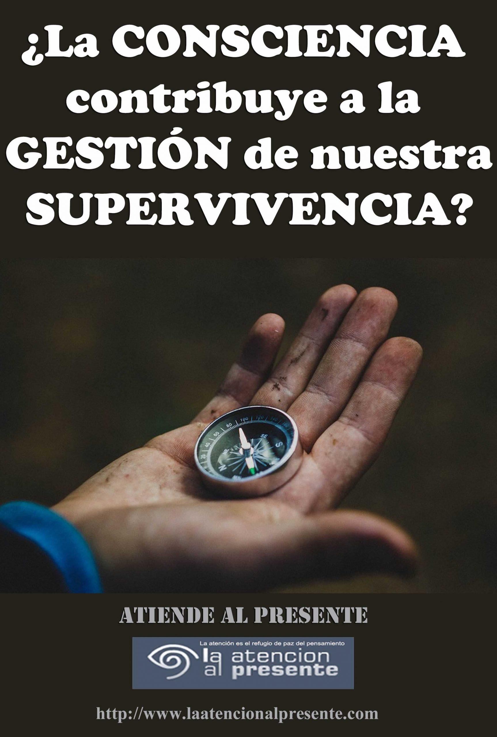 16 de junio Esteban La CONSCIENCIA contribuye a la GESTIÓN de nuestra SUPERVIVENCIA min scaled