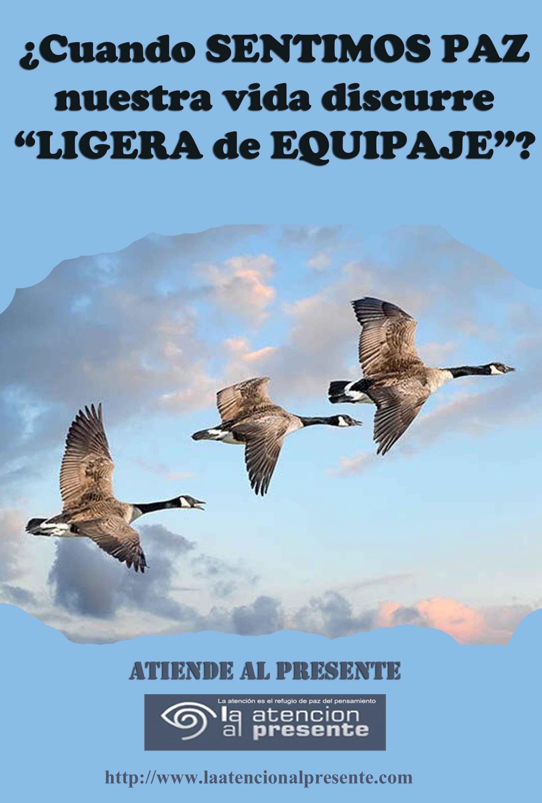 3 de Julio Esteban Cuando SENTIMOS PAZ nuestra vida discurre LIGERA de EQUIPAJE min scaled