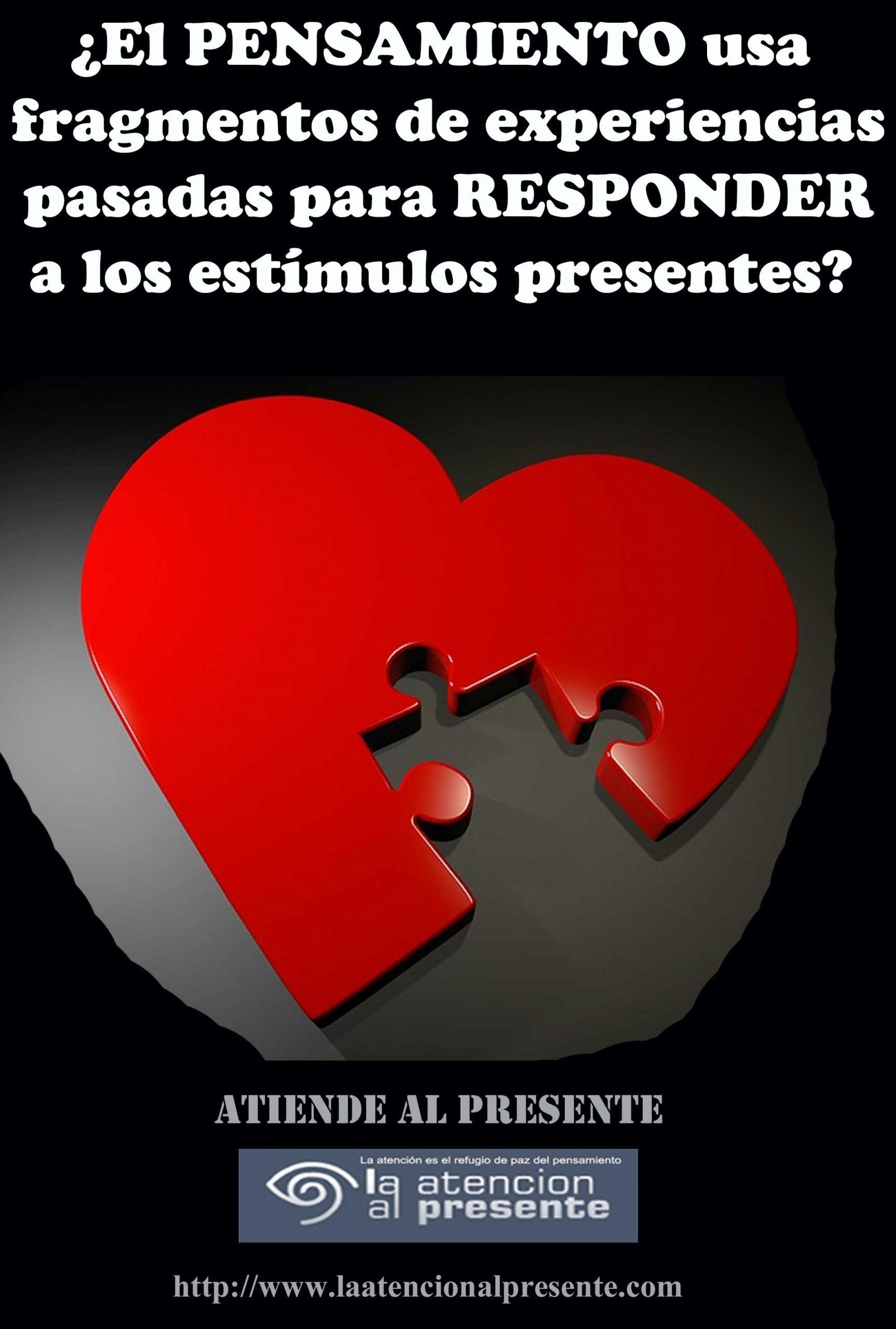 5 de Julio Esteban El PENSAMIENTO usa fragmentos de experiencias pasadas para RESPONDER a los estímulos min scaled