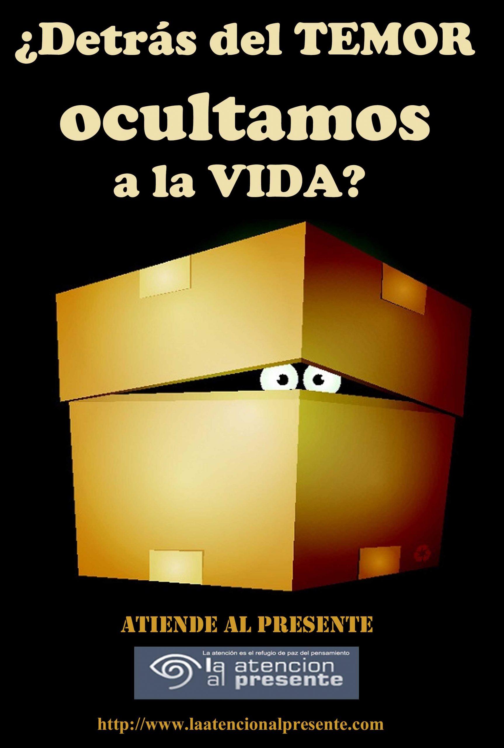 9 de Julio Esteban Esteban Detras del TEMOR ocultamos a la VIDA min scaled