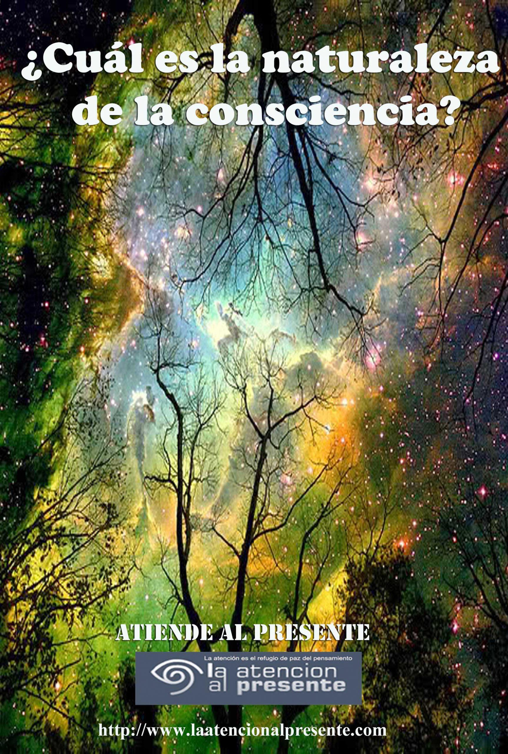25 de setiemb Esteban Cual es la naturaleza de la consciencia min scaled
