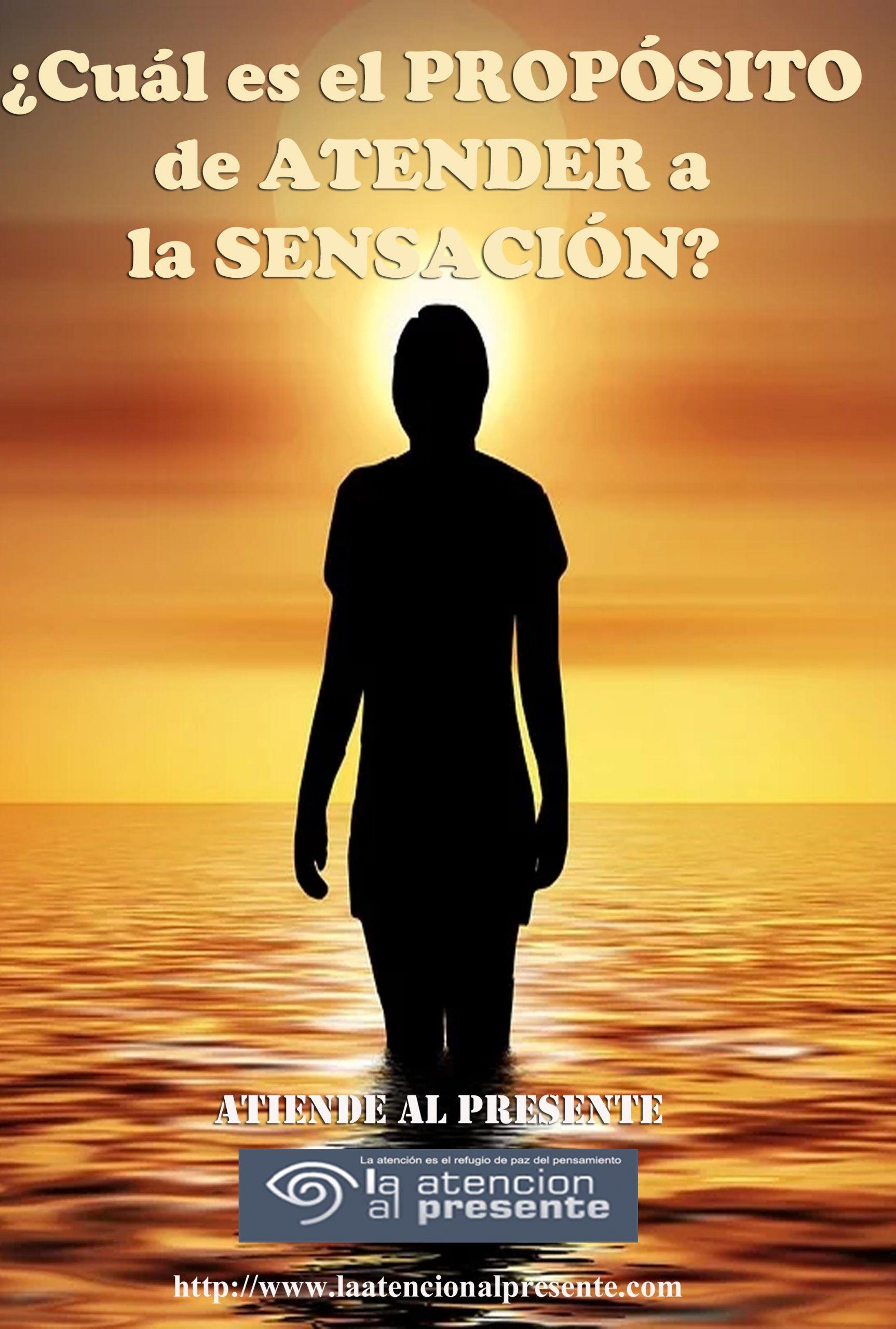 3 de agosto Isa Cuál es el PROPÓSITO de ATENDER a la SENSACIÓN min scaled