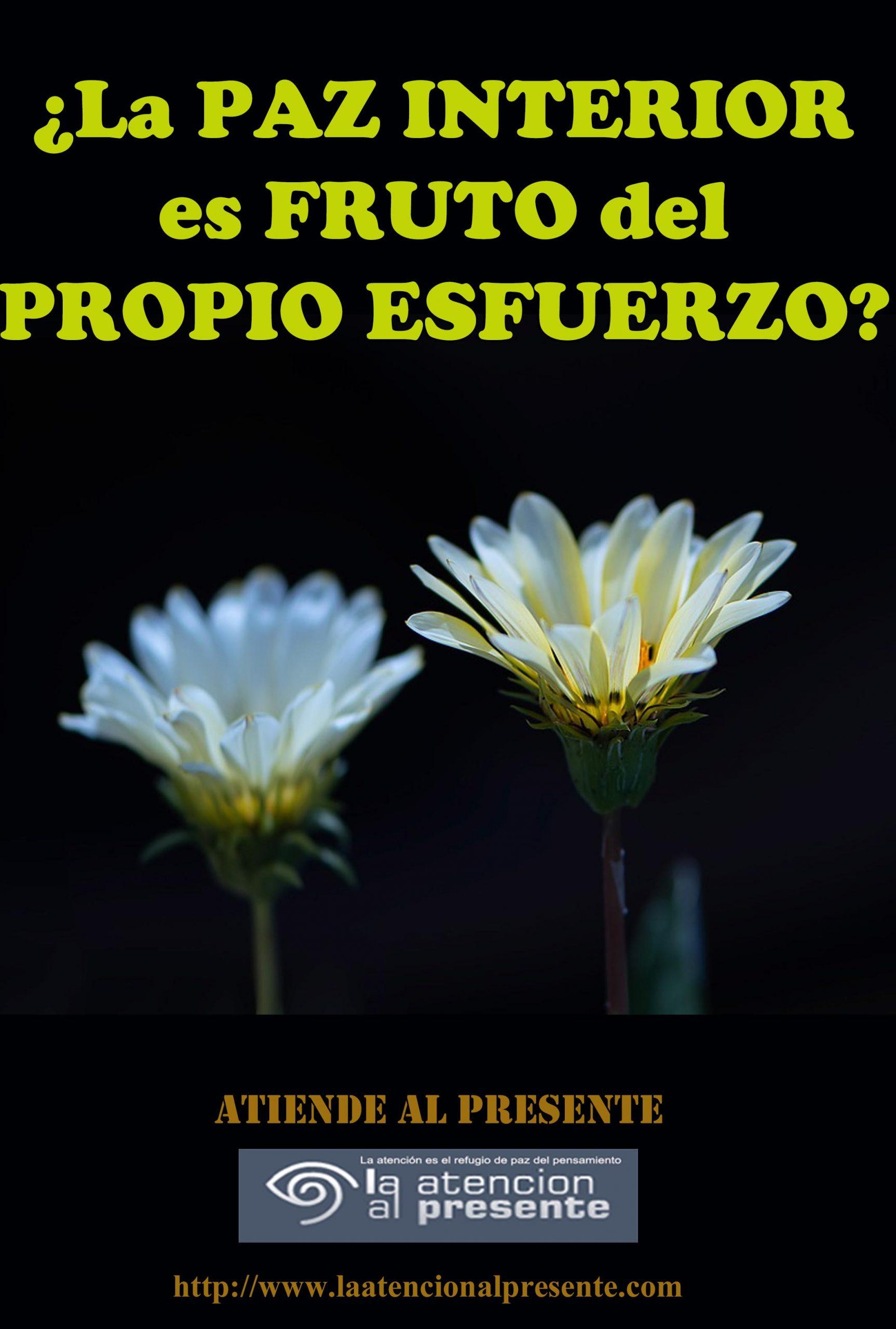 1 de noviembre Esteban La PAZ INTERIOR es FRUTO del PROPIO ESFUERZO min scaled