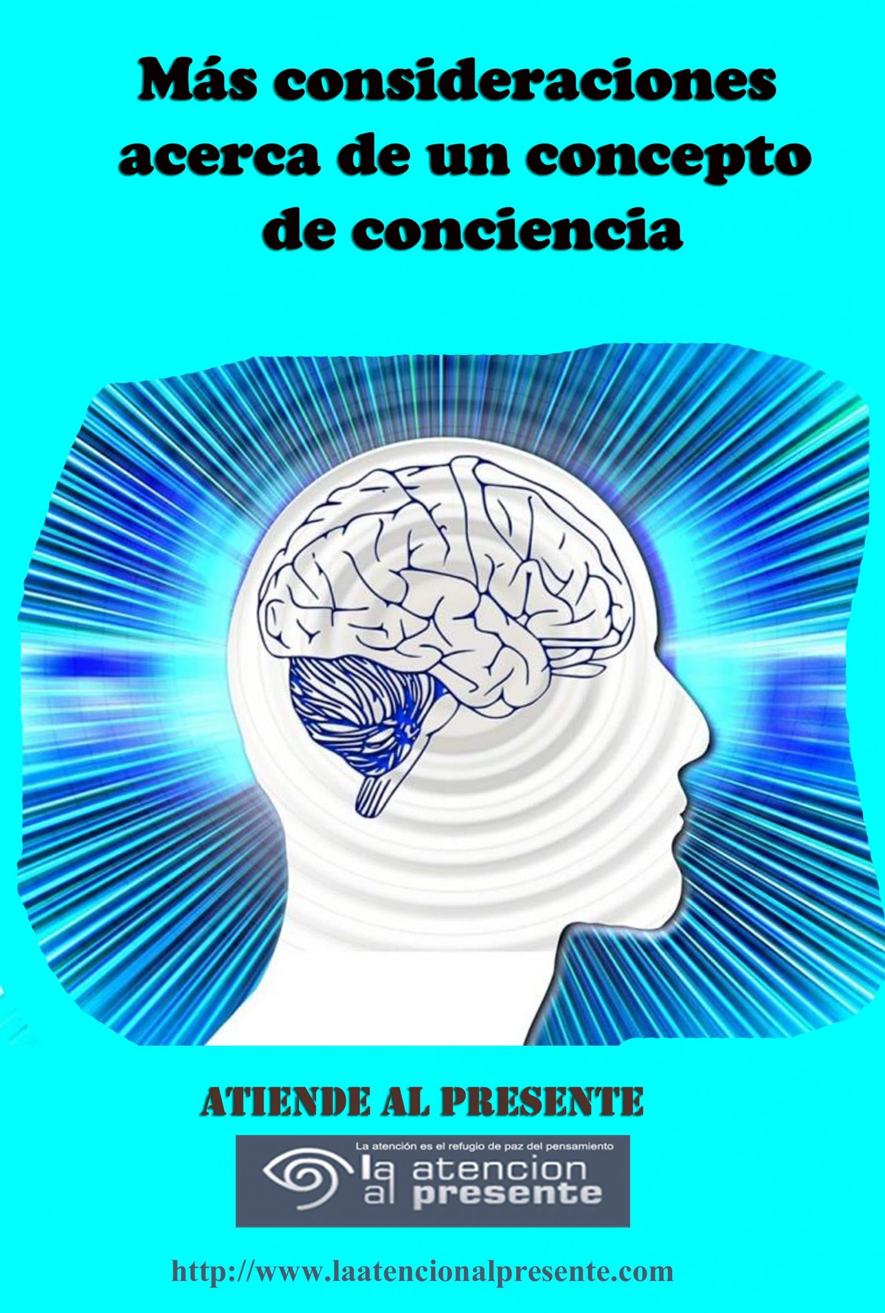 27 de Diciembre Esteban Mas consideraciones acerca de un concepto de conciencia min scaled