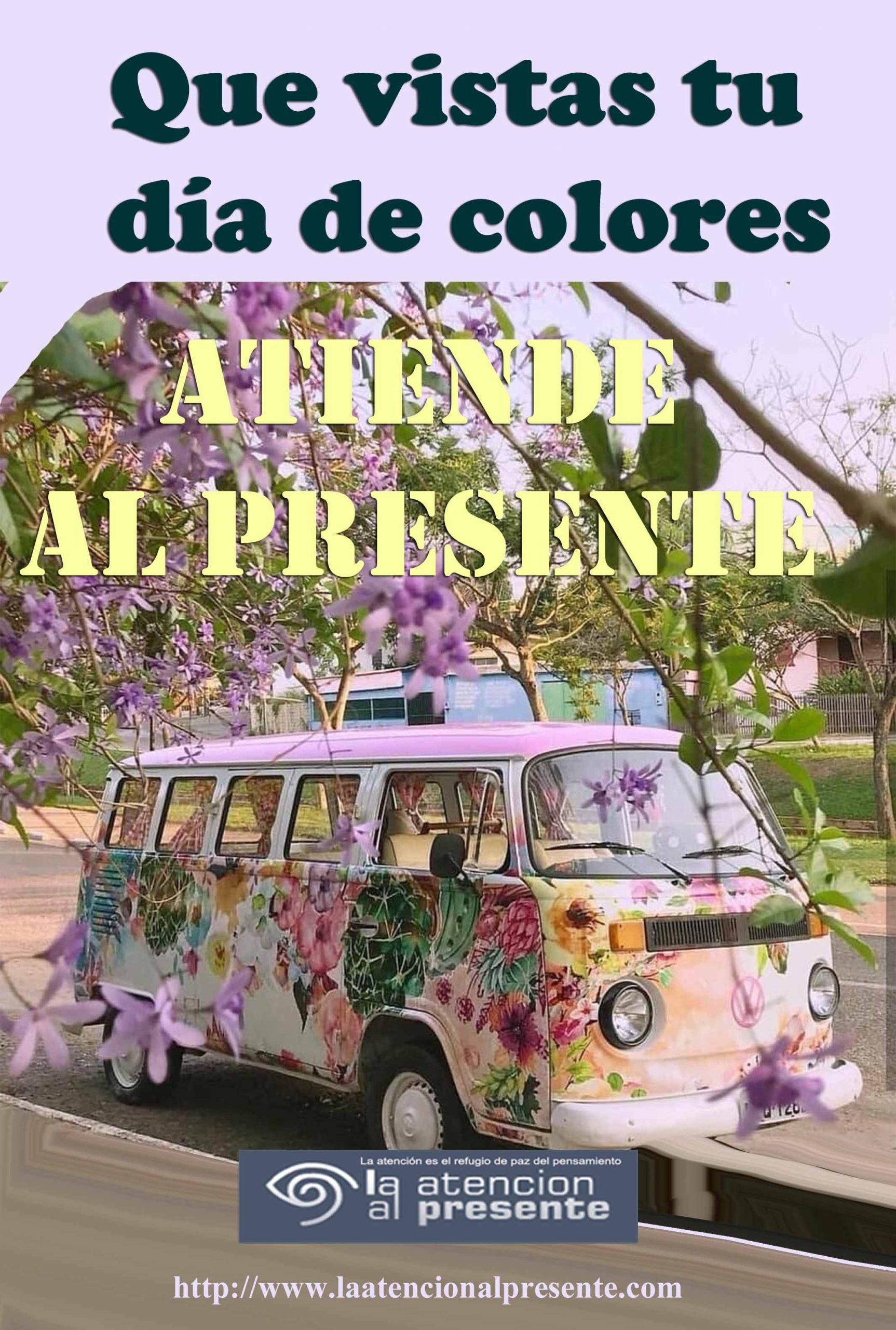 3 de enero Esteban Que vistas tu dia de colores min scaled